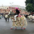 Sur la route de Soi ... Jaipur.